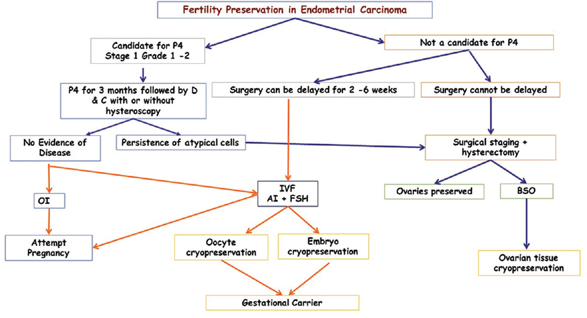 Fertility preservation in endometrial carcinoma: Case series